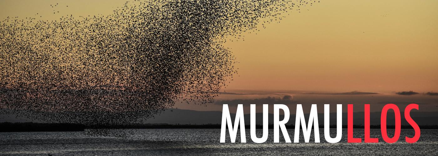 d_Murmullos